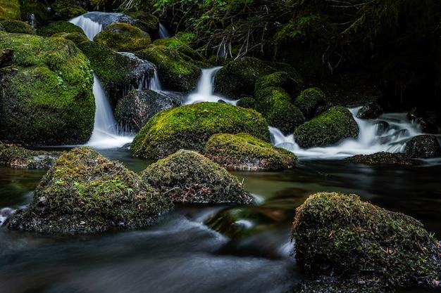 Close de uma cachoeira cercada por rochas cobertas de musgo