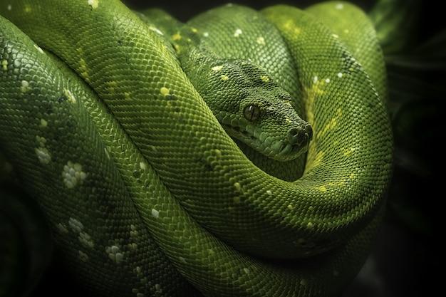 Close de uma cobra-árvore verde fofa