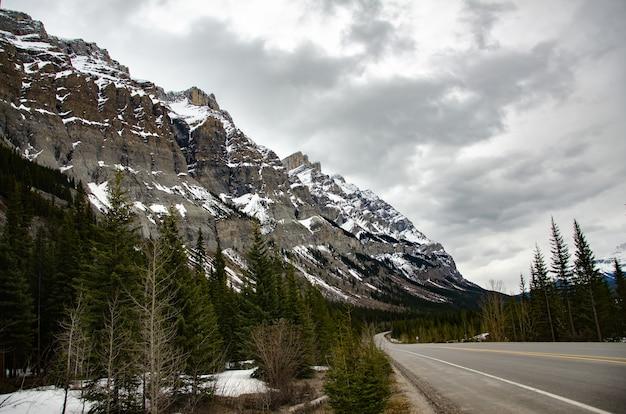 Close de uma estrada e abetos em primeiro plano de uma montanha coberta de neve