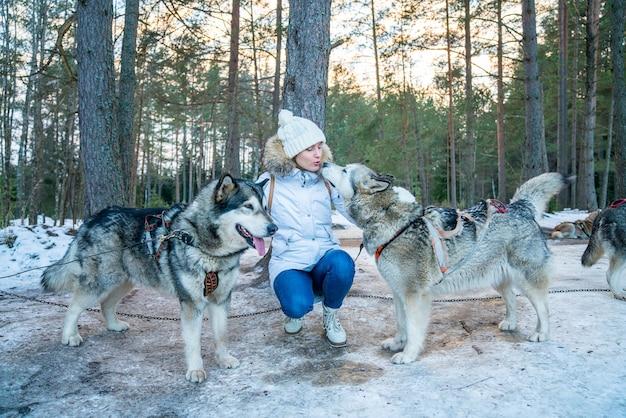 Close de uma menina com cães de trenó huskies na neve