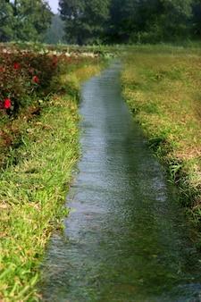Close do sistema de irrigação no jardim de flores