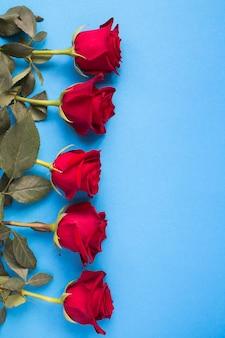 Close em rosas vermelhas na superfície azul
