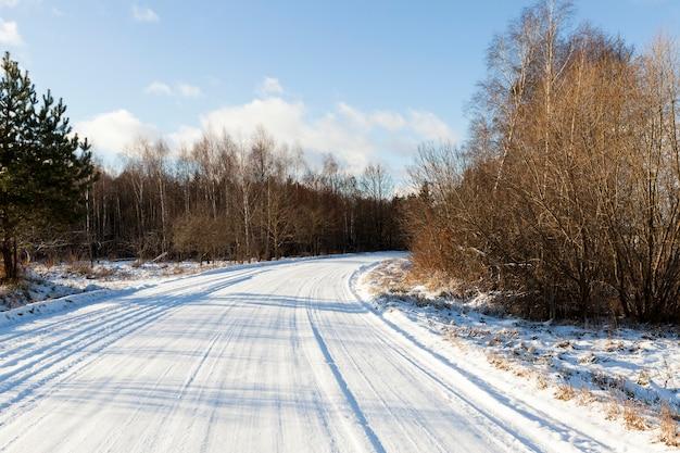 Close fotografado de troncos de árvores nuas no inverno. estrada coberta de neve e céu azul
