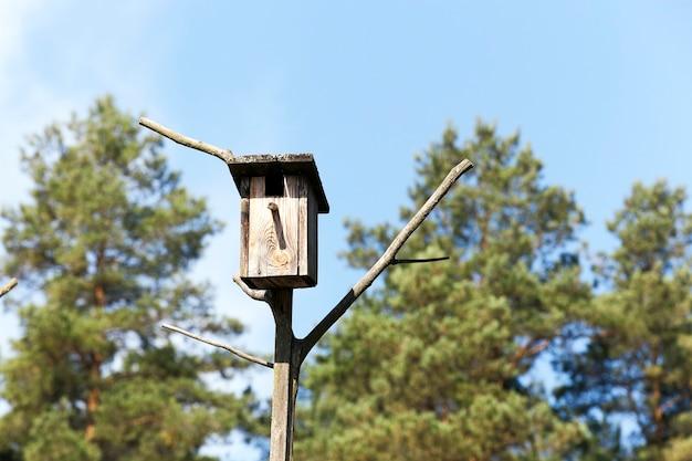 Close fotografado de uma casa de passarinho feita de madeira