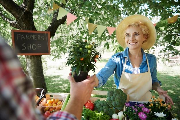 Close na mulher vendendo safras de seu jardim