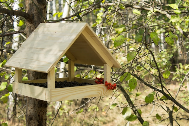 Close no comedouro de pássaros de madeira na floresta