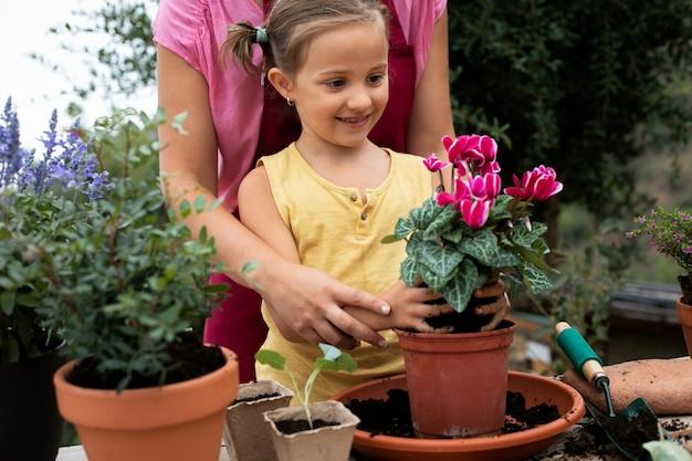 Close no processo de transplante de plantas