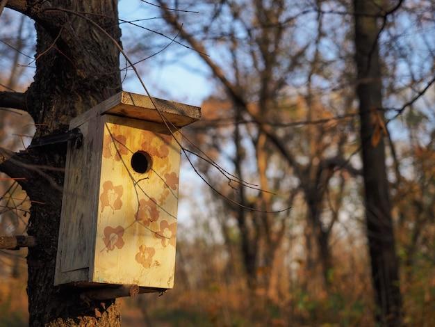 Close-up birdhouse pendurado em uma árvore no fundo da floresta de outono