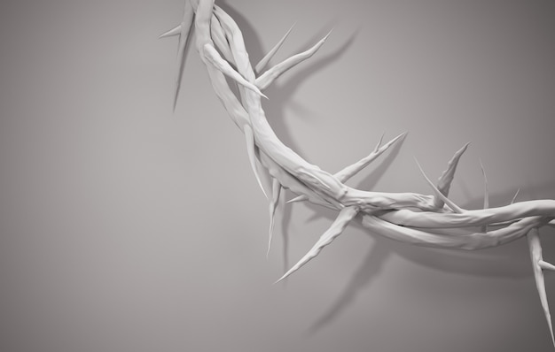 Close up crown of thorns 3d rendering espaço vazio