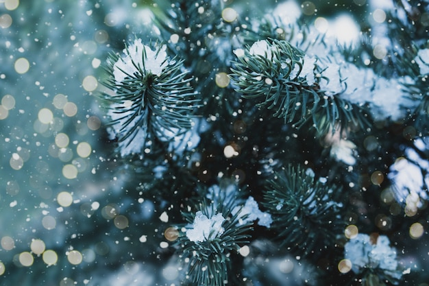 Close up da árvore de natal com luz, floco da neve. fundo de férias de natal e ano novo. tom da cor do vintage.