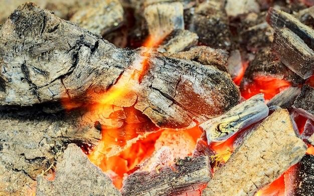 Close up da madeira ardente quente, carvões. chama