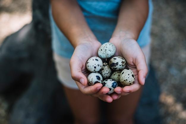 Close-up da mão de uma menina segurando o ovo de codorna
