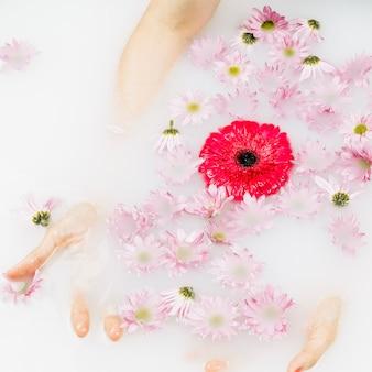 Close-up da mão de uma mulher com flores vermelhas e cor de rosa, flutuando na água