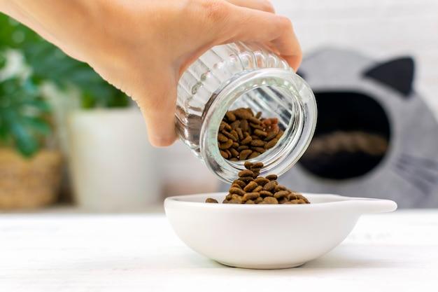 Close-up da mão do dono do animal enche a tigela do gato com comida seca no contexto da casa do gato. dieta e nutrição, cuidado com a saúde felina.