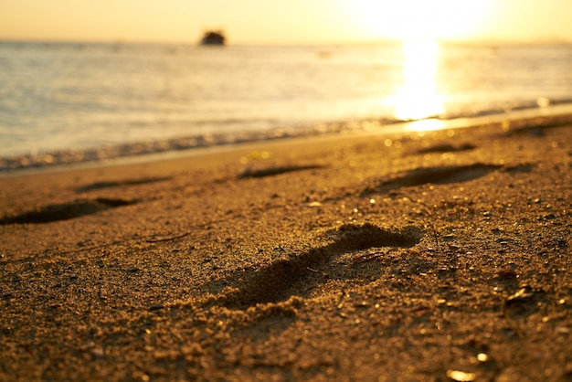 Close-up da praia ao pôr do sol