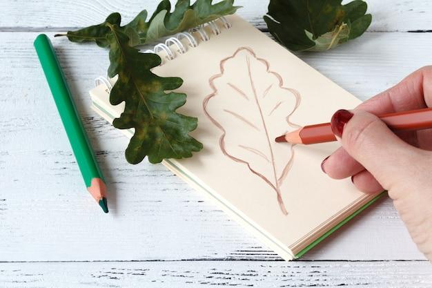 Close-up das mãos desenhando uma folha de outono coberta com folhas de outono