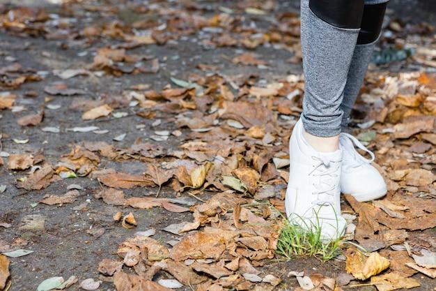 Close-up das sapatilhas brancas em folhas secas
