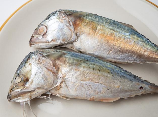 Close up de 2 cavalas em um prato, a cavala é um peixe pequeno que é popular para cozinhar, a carne da cavala tem muitos nutrientes. tanto o ácido linoléico quanto o ácido cocosahecinóico (dha).