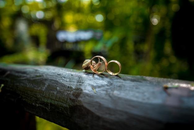 Close-up de anéis de casamento perto de um caracol rastejando durante o pôr do sol