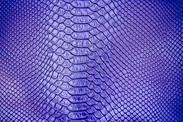 Close up de azul uso de textura de pele de cobra de luxo para plano de fundo