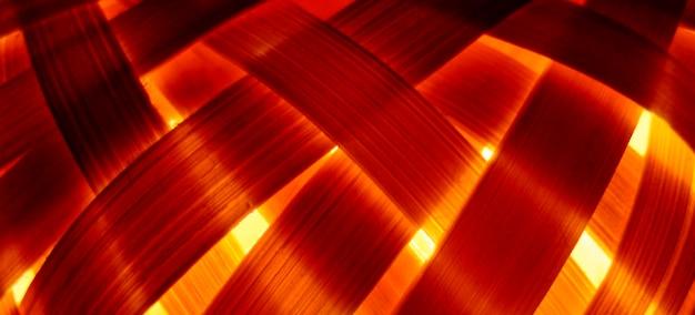 Close-up de bambu iluminado