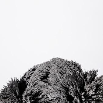 Close-up de barbear metal magnético isolado no fundo branco