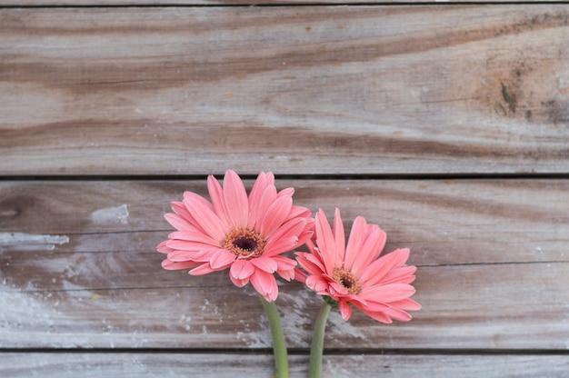 Close-up de belas flores no fundo de madeira