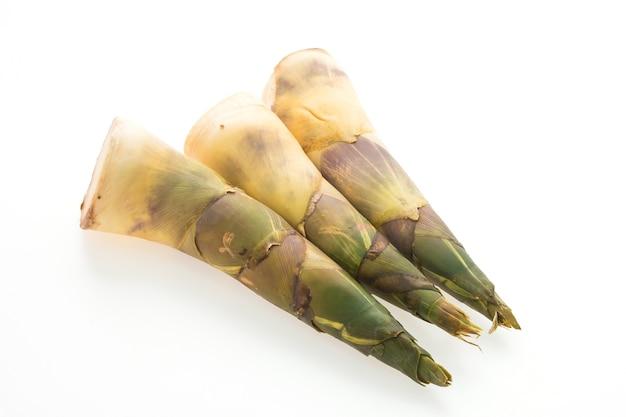 Close-up de brotos de bambu