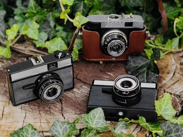 Close-up de câmeras fotográficas retrô em um log