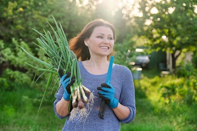 Close-up de cebolinha fresca na mão de uma mulher na horta