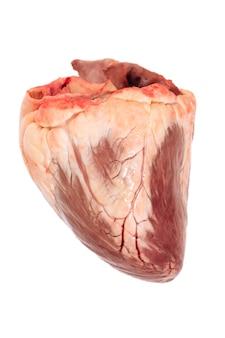 Close-up de coração de carne crua isolado no fundo branco. vista do topo