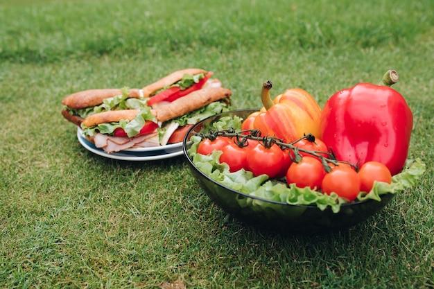 Close-up de deliciosos sanduíches com vegetais. tigela de vegetais saudáveis eco na grama.