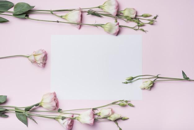 Close-up, de, eustoma, flor, ramos, ligado, branca, papel, contra, fundo cor-de-rosa