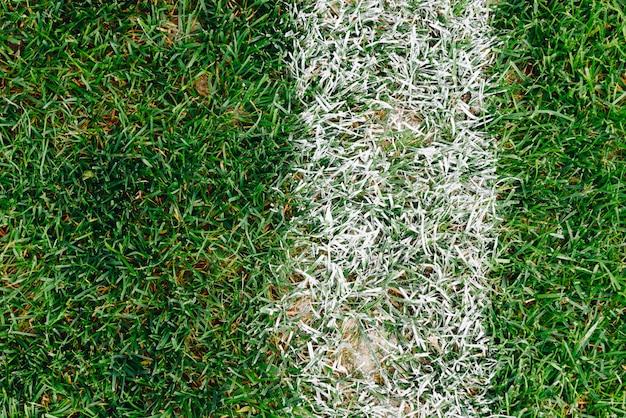 Close up de grama e marcas no campo de futebol ou futebol