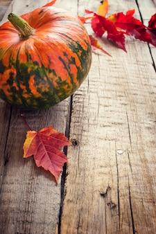 Close-up de grande abóbora e folhas de outono
