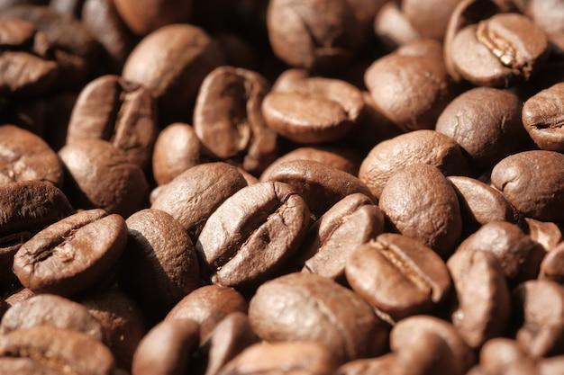Close up de grãos de café frescos