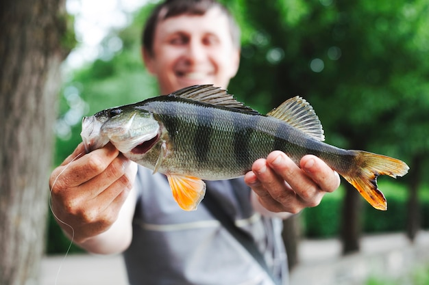 Close-up, de, homem, segurando, fresco, pegado, peixe