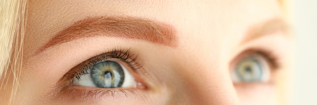 Close-up de jovem com luz perfeita sobrancelha marrom, olhando para cima. tiro macro da fêmea após o procedimento facial de beleza. conceito permanente de cosmetologia e bem-estar maquiagem