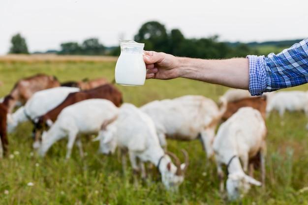 Close-up de leite de cabra