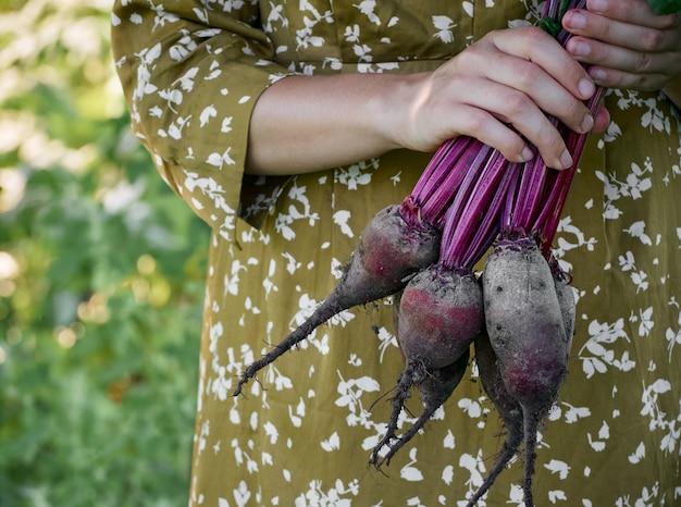 Close-up de mãos femininas segurando beterraba