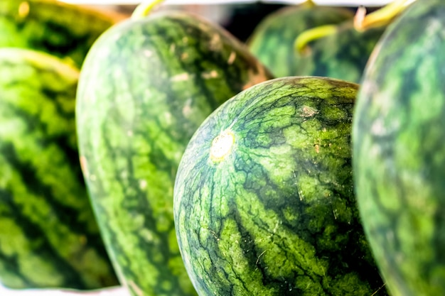 Close-up de melancia no mercado para vender