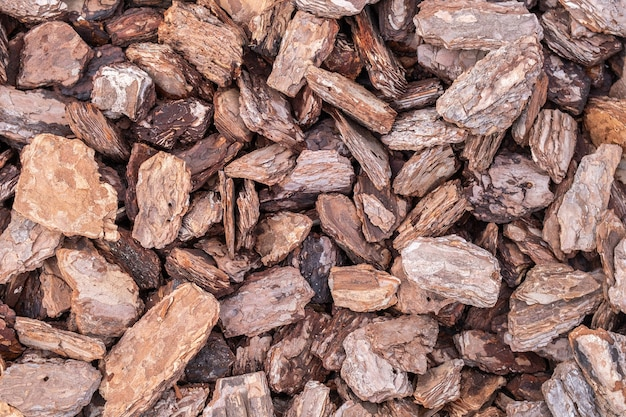 Close-up de muitas lascas de madeira. textura decorativa de aparas de madeira. padrão de material natural.