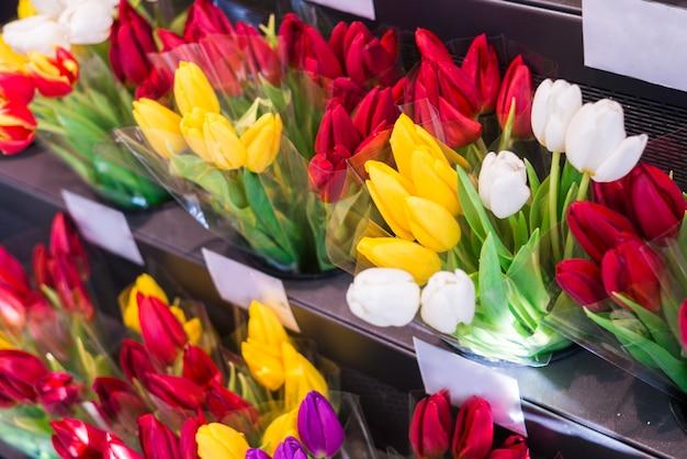 Close-up de muitos buquês de tulipa rosa, vermelho e amarelo em um florista, mercado de flores ou loja.