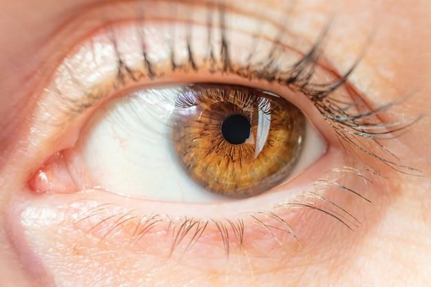 Close-up de olhos castanhos feminino. bela textura da íris. o olho olha para a esquerda. o conceito de visão, oftalmologia. foto macro. sem retoques.