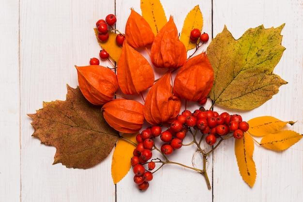 Close-up de outono e composição festiva de folhas, physalis, rowan em uma mesa de madeira branca