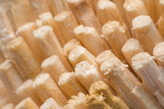 Close-up de palitos de fósforo