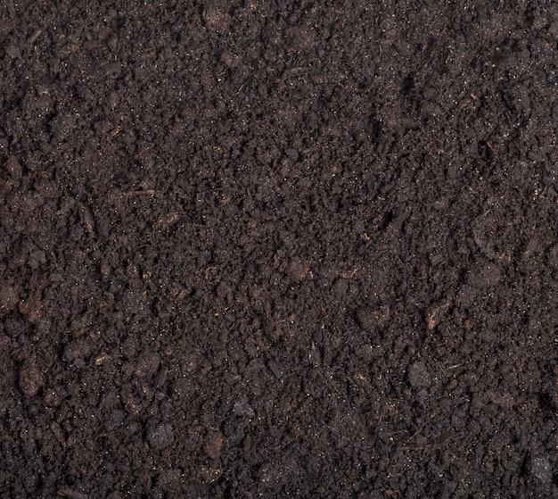 Close-up de solo preto