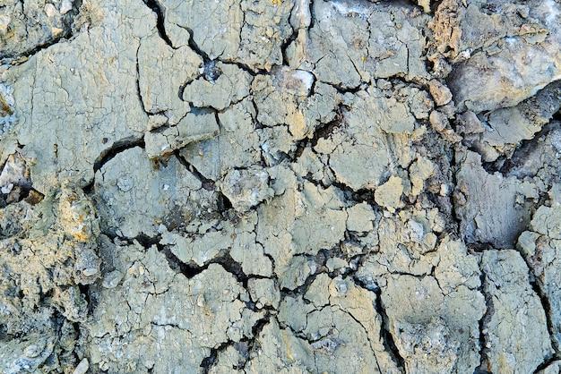 Close up de solo seco com textura rachada de solo