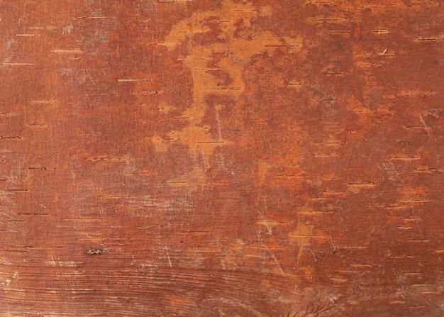 Close up de textura de casca de árvore em árvore velha