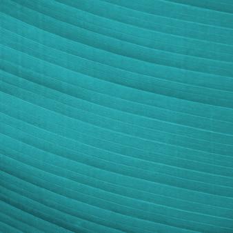 Close-up de textura de folha de banana verde